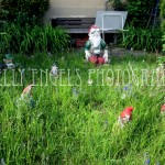 Gnome Garden (Germany)